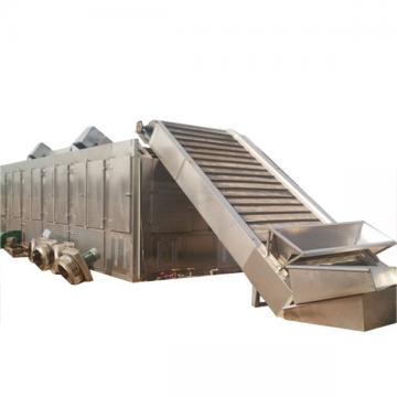 Heat Pump Hot Air Mesh Belt Fish Chilli Mango Fruit Vegetable Drying Dehydrator Machine Dryer
