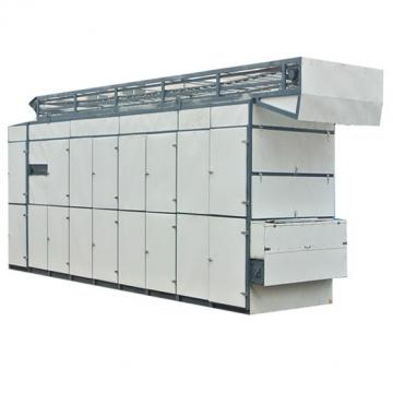 Dw Single -Layer Mesh -Belt Dryer