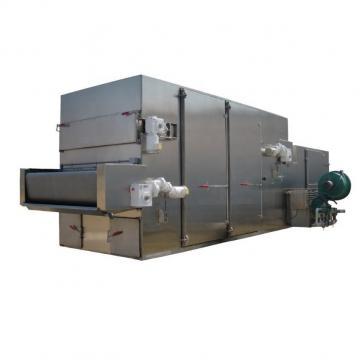 Stainless Steel Mesh Belt Dryer for Pigment